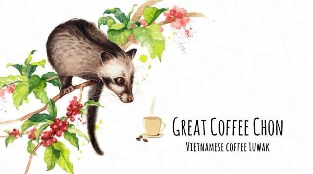 chon kopi luwak