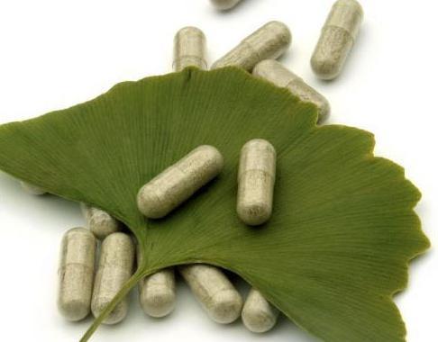 гинкго билоба из Вьетнама