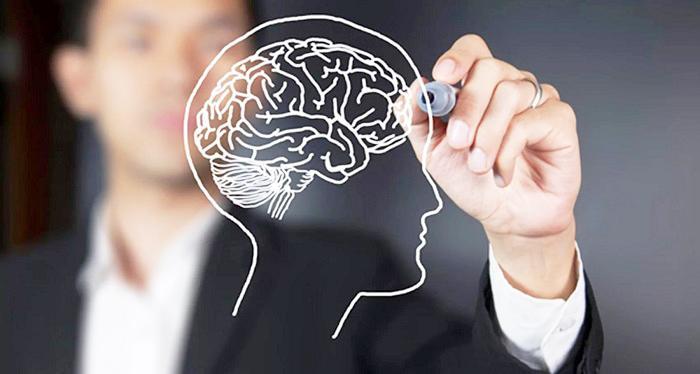 инструкция по применению к капсулам для головного мозга