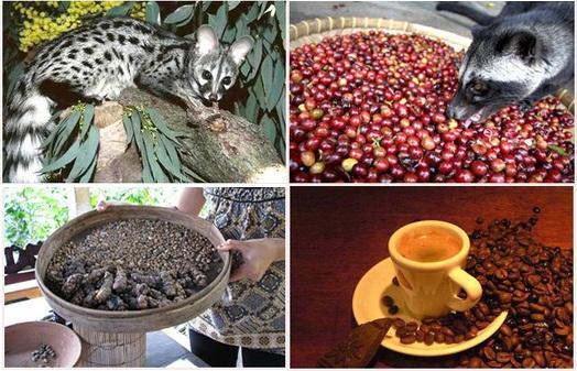 вьетнамское coffee