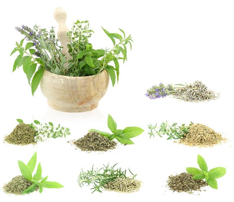 натуральные компоненты зеленых растений