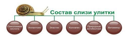 состав муцина
