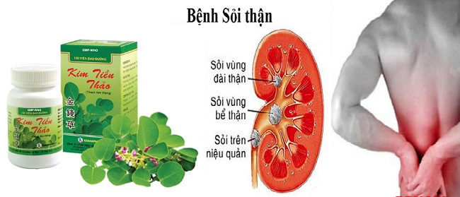 вьетнамский препарат для лечения почек