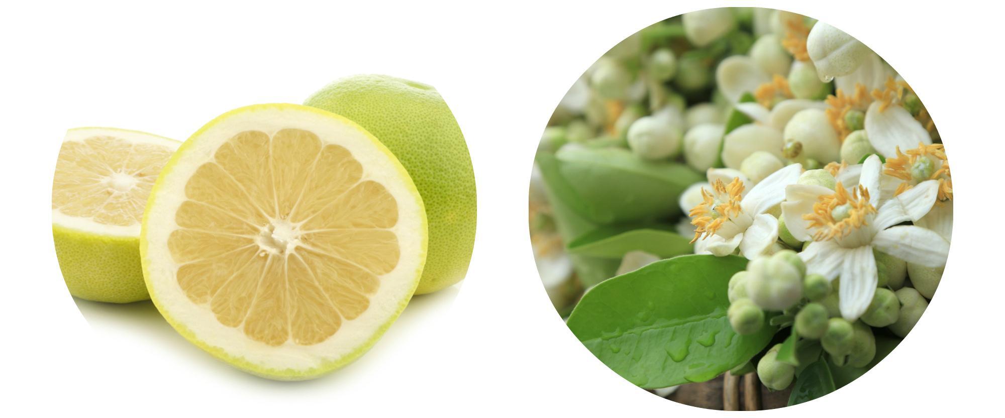фруктовый шампунь Thorakao