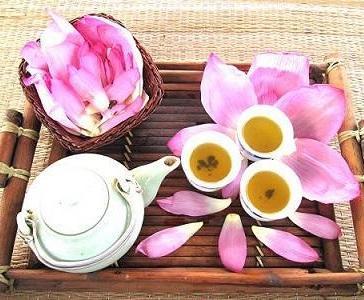 Зеленый чай при беременности и периоде лактации